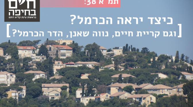 """כיצד תיראה חיפה אחרי תמ""""א 38?"""