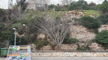 סלעים ואבנים מדרדרות לצד הרחוב
