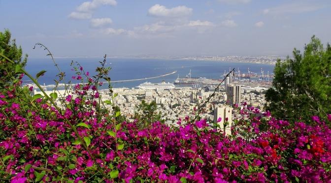 המגזין הקנדי 'הקאי' כותב על הפסיפס החברתי של חיפה, ועליי