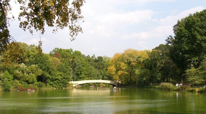 הצעה לסדר: הכרזה על הצורך בהקמת פארק מטרופוליני או רובעי הכולל אטרקציות לילדים ומשפחות, ושדרוג מתקני משחק בחלק מהפארקים הקיימים ברחבי העיר