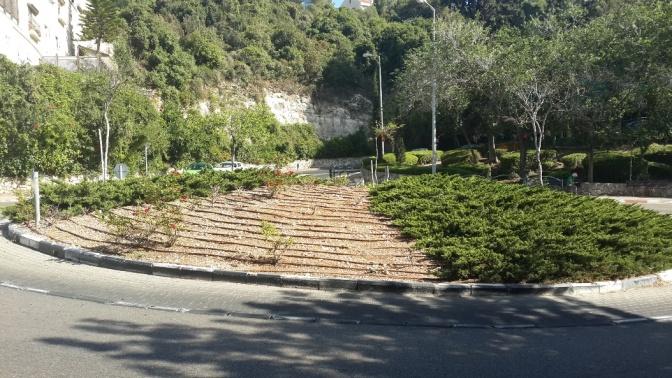 הצעה לסדר – טיפול ושיקום שכונת רוממה החדשה